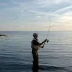 fiskeri fra stranden